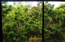 desde mi ventana tica