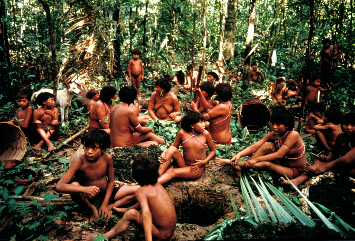 YANOMAMI POUND LEAVES FOR TIMBÓ, DEMINI, BRAZIL